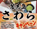 2016さわらキャンペーン-01